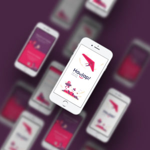 haulap-app-proyecto-zinkers-digitalbusiness-transformacindigital